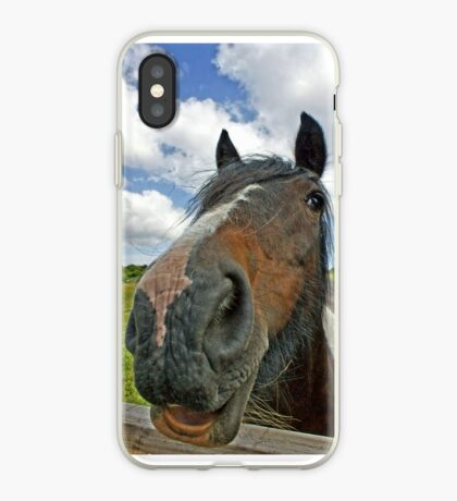 Beautiful horse. Seen at a Wales riding centre iPhone Case