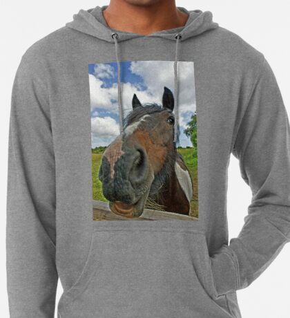 Beautiful horse. Seen at a Wales riding centre Lightweight Hoodie