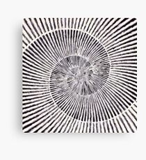 Flat Shell Spiral Canvas Print