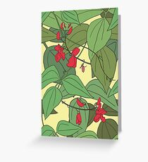 Scarlet runner beans pattern 2 Greeting Card