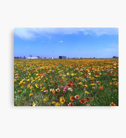 Flowerscape Canvas Print