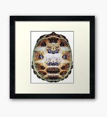 Tortoise Shell - Carapace Framed Print