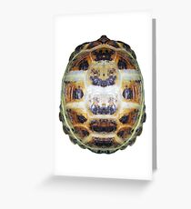 Tortoise Shell - Carapace Greeting Card