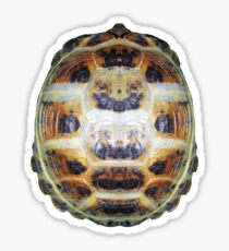 Tortoise Shell - Carapace Sticker