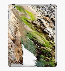 seaweed rocks and the ocean iPad Case/Skin