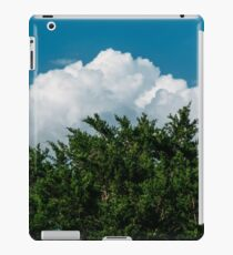 Nature in Layers iPad Case/Skin