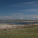 Rye Nature Reserve - England by MisterD