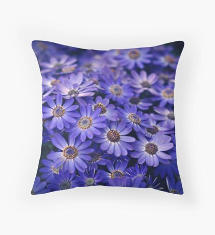 Cineraria Blue Throw Pillow