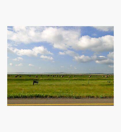 Rolling Flatlands Photographic Print