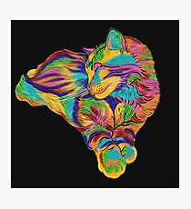 Psychedelic Max Photographic Print