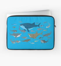 Know Your Sharks Laptop Sleeve