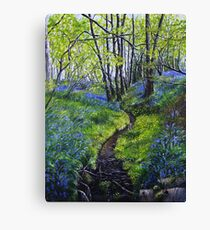 Bluebells and Brook Canvas Print