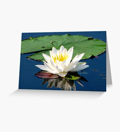 Solitude Greeting Card