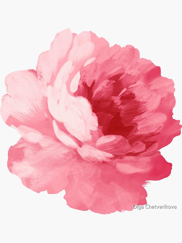 Flor peonía rosa de afremovartist