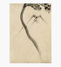 Hokusai Katsushika - A Tree Trunk With Branch And Leaves  Photographic Print