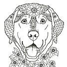 Art of Labrador by dvampyrelestat