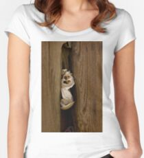 Captive Women's Fitted Scoop T-Shirt