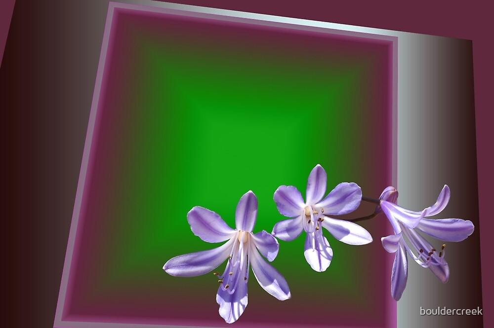 Purple Three by bouldercreek