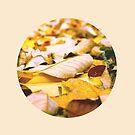 Autumn by S. Raja