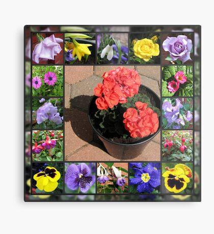 Sonnenschein und Duschen-Blumencollage Metallbild