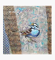 His Eye is on the Sparrow Photographic Print