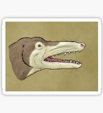 The walking whale, Ambulocetus Sticker
