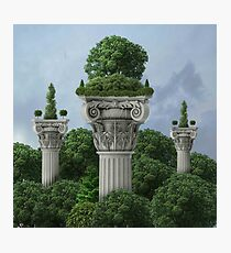 Classical - Sky High Horticulture Photographic Print