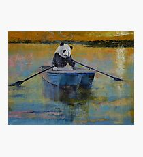 Panda Reflections Photographic Print