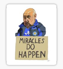 MIRACLES DO HAPPEN  Sticker