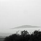 An evening Scotch Mist by sarnia2