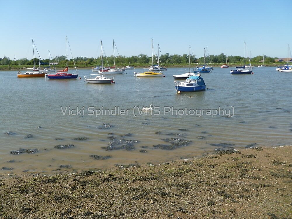 Colourful Boats, One Swan by Vicki Spindler (VHS Photography)