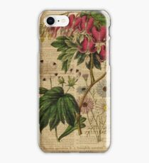 Botanical print, on old book page - flowers iPhone Case/Skin