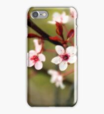 Red Bush Blossoms iPhone Case/Skin