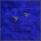Don't Chase Your Dreams by Diamante Lavendar by DiamanteLavenda