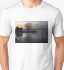 Gray Reflections and Ice Patches T-Shirt