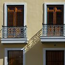 Sophisticated Wrought Iron Shadows - the Beautiful Colonial Architecture of Old San Juan by Georgia Mizuleva