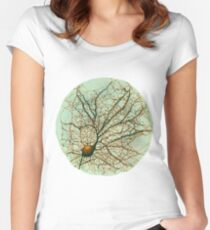 Dendritic tree and spines of an hippocampal neuron - watercolor - green Women's Fitted Scoop T-Shirt
