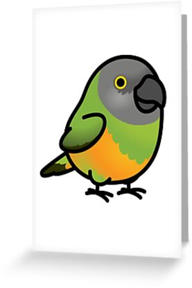 Chubby senegal parrot greeting cards by birdhism redbubble chubby senegal parrot by birdhism m4hsunfo