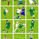 Ireland at Euro 2016 by westonoconnor
