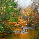 AUTUMN NEAR ELKMONT by Chuck Wickham