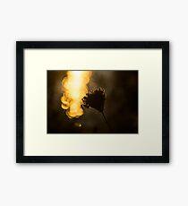 Luminous Seed Shine Framed Print