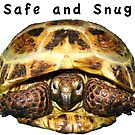 Tortoise - Safe and snug by LuckyTortoise