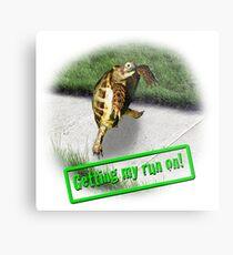 Tortoise - Getting my run on Metal Print