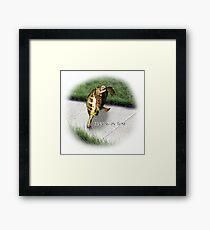 Tortoise - Running on time Framed Print