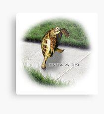 Tortoise - Running on time Metal Print