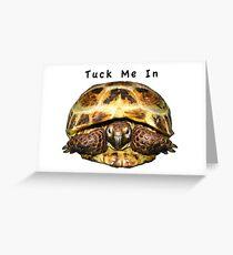 Tortoise - Tuck me in Greeting Card