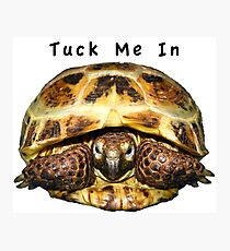 Tortoise - Tuck me in Photographic Print