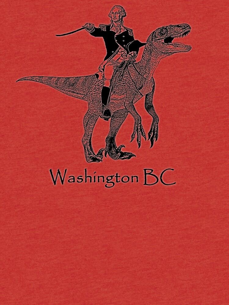 Washington, BC von SuperbFlewUs