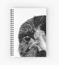 The Secret of the Raven Spiral Notebook