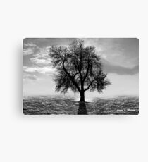 Tree, Office Art Canvas Print